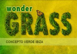 Concepto Verde Ibiza