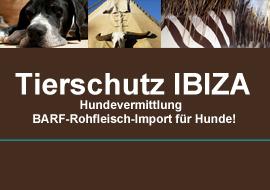 Tierschutz IBIZA